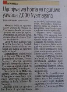 IMG 20151217 121026 220x300 Zaidi ya Nguruwe 2,000 wafa kwa ugonjwa wa Homa ya Nguruwe Nyamagana