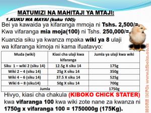 chicken management swahili 009 300x225 Ufugaji wa kuku kwa njia ya kisasa