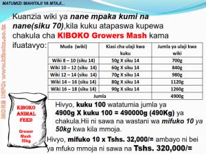 chicken management swahili 011 300x225 Ufugaji wa kuku kwa njia ya kisasa