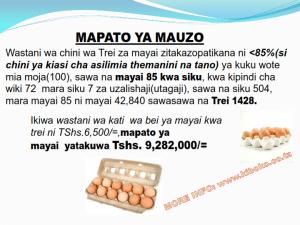 chicken management swahili 016 300x225 Ufugaji wa kuku kwa njia ya kisasa