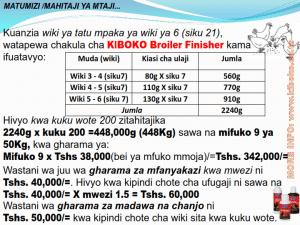 chicken management swahili 020 300x225 Ufugaji wa kuku kwa njia ya kisasa