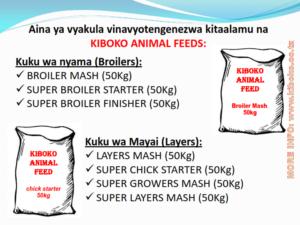 chicken management swahili 007 300x225 Ufugaji wa kuku: Namna ya kuanza na mchanganuo wa mapato na matumizi