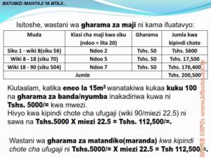 chicken management swahili 014 300x225 Ufugaji wa kuku: Namna ya kuanza na mchanganuo wa mapato na matumizi