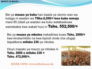 chicken management swahili 017 300x225 Ufugaji wa kuku: Namna ya kuanza na mchanganuo wa mapato na matumizi