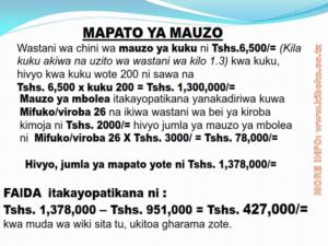chicken management swahili 024 300x225 Ufugaji wa kuku: Namna ya kuanza na mchanganuo wa mapato na matumizi