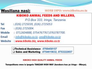 chicken management swahili 029 300x225 Ufugaji wa kuku: Namna ya kuanza na mchanganuo wa mapato na matumizi